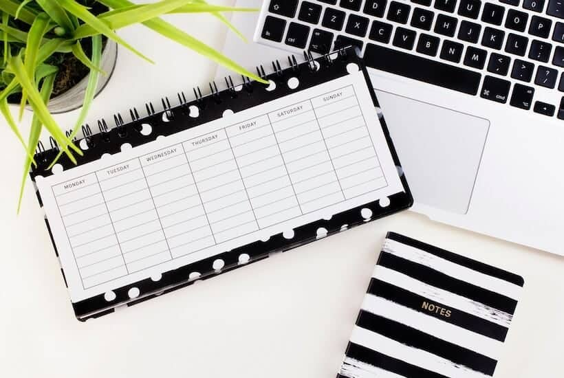 Black and white lay flat of weekly schedule, notebook, MacBook, and green plant